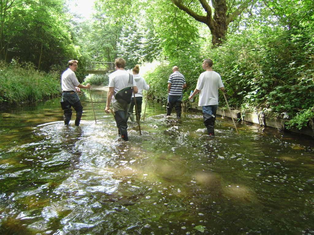 Explore Lewisham's rivers