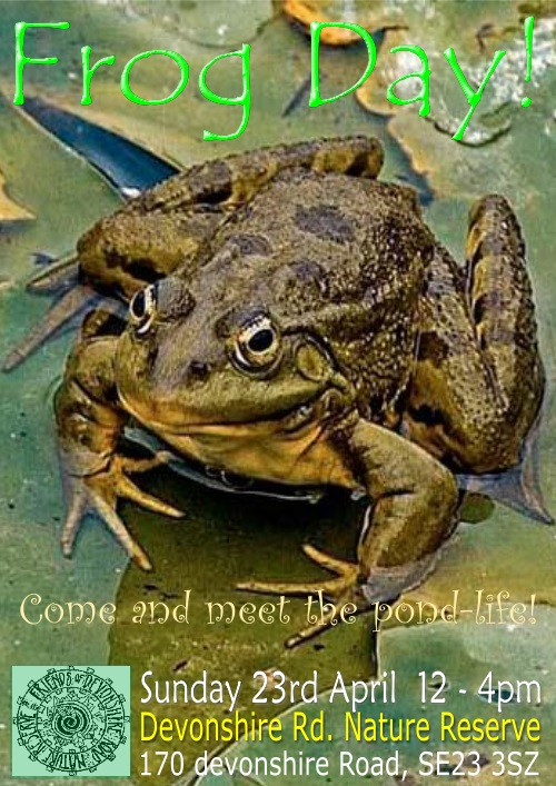 Frog Day 2017